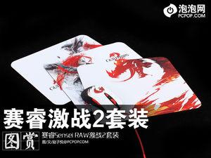 赛睿《激战2》网游主题电竞套装图赏