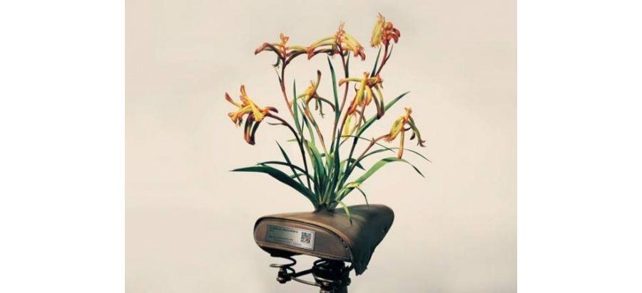 让废旧自行车开出鲜花