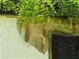 奥林巴斯E-M5 MarkII样张图片2