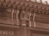 奥林巴斯E-M5 MarkII样张图片10