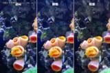 华为P9 4GB+64GB样张图片3